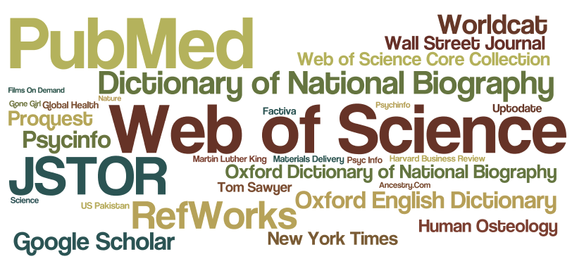 Word cloud depicting the 30 most frequently used search terms. The size of the text is proportional to the number of times the term has been used.