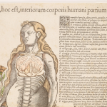 The History of Medicine's Anatomical Fugitive Sheet Digital Collection - March 9