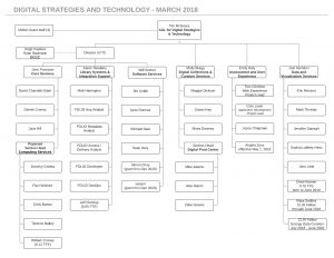 Digital Strategies and Technology organizational chart