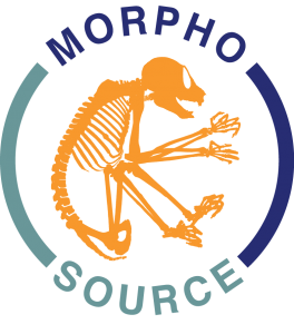 MorphoSource logo