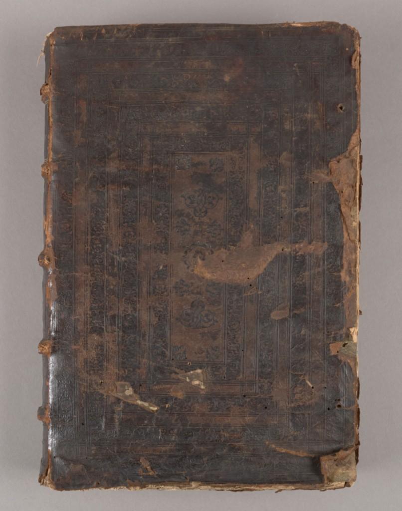 Durandi (Front Board)