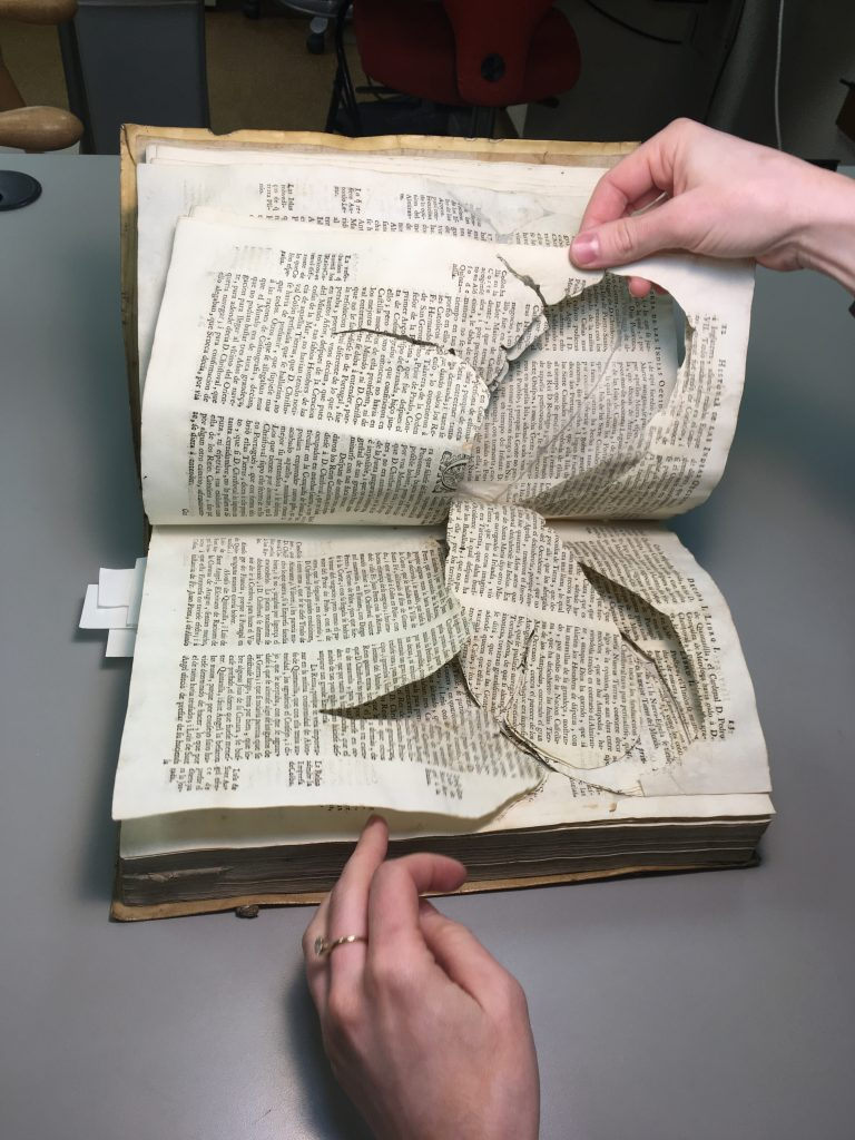 insect damage creating handling challenges for book pages.