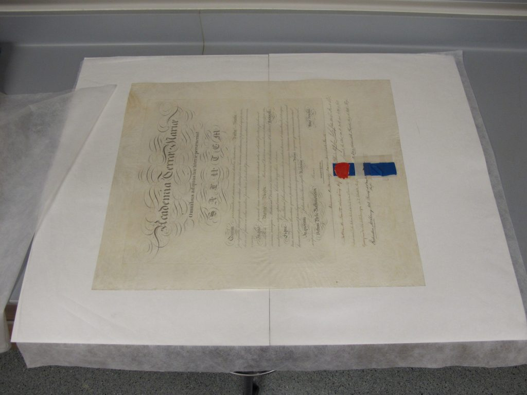 Flattened parchment document
