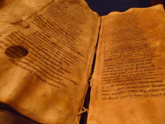 Image of Duke's Latin manuscript 118