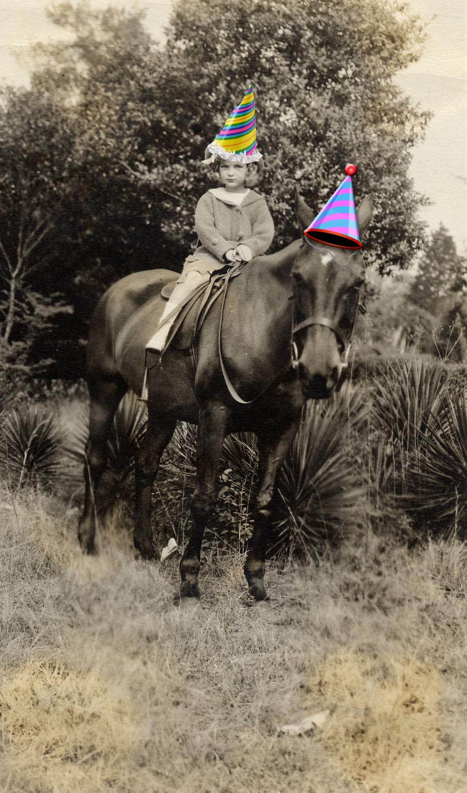 DD on horse c