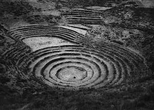 Moray, 1975. Toned gelatin silver print by Edward Ranney.