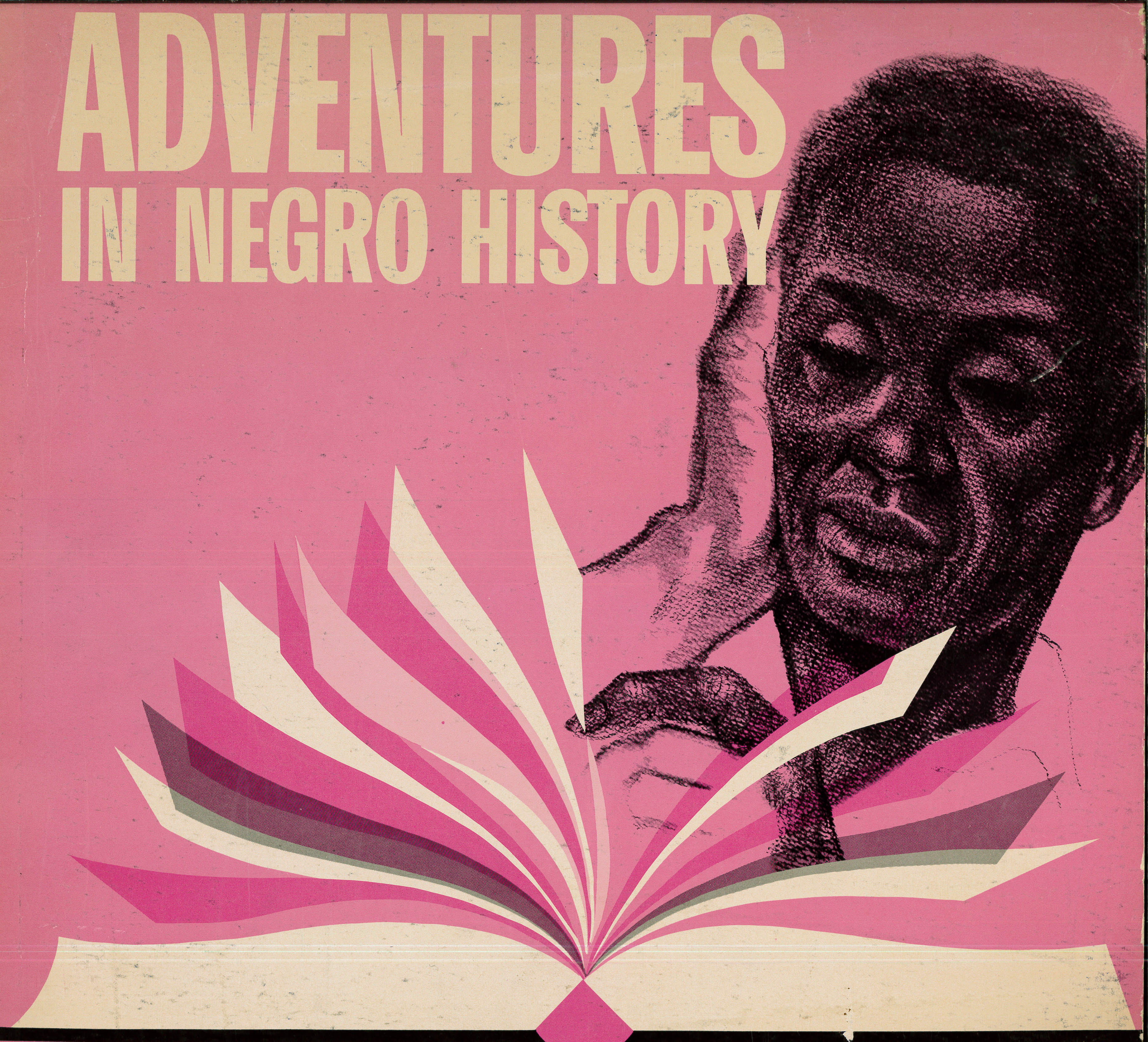 adventures in negro history in alligood