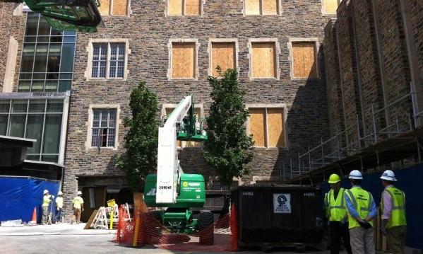 Workers are removing shelving and hazardous building materials from the rear entrance of Rubenstein Library.