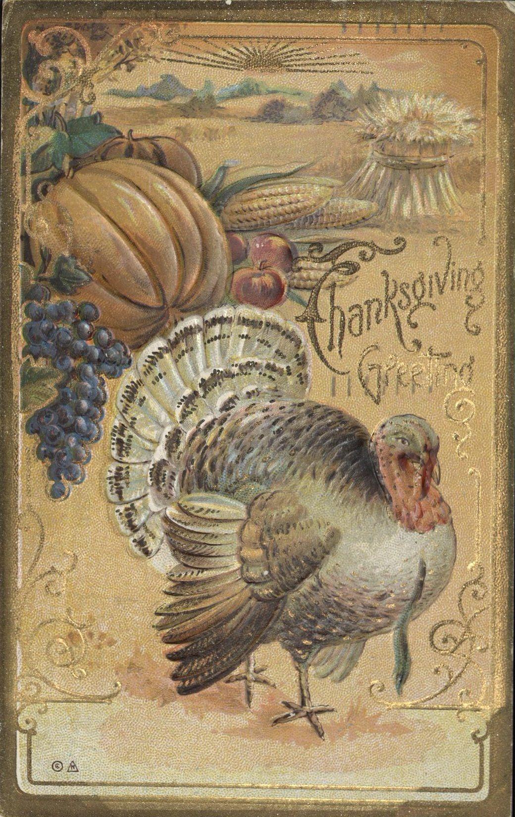 thanskgiving postcard