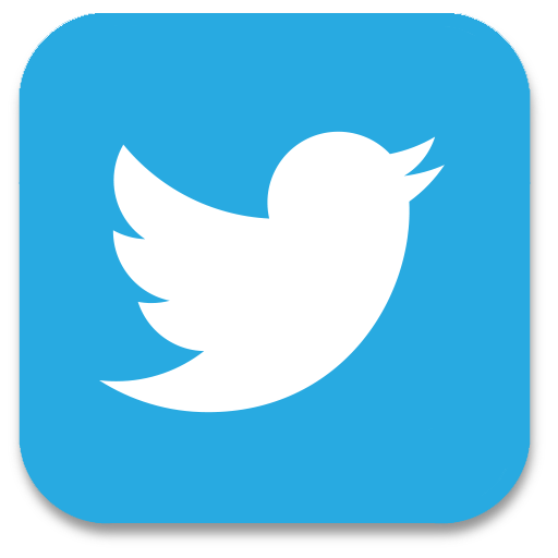 Image result for twitter icon for website