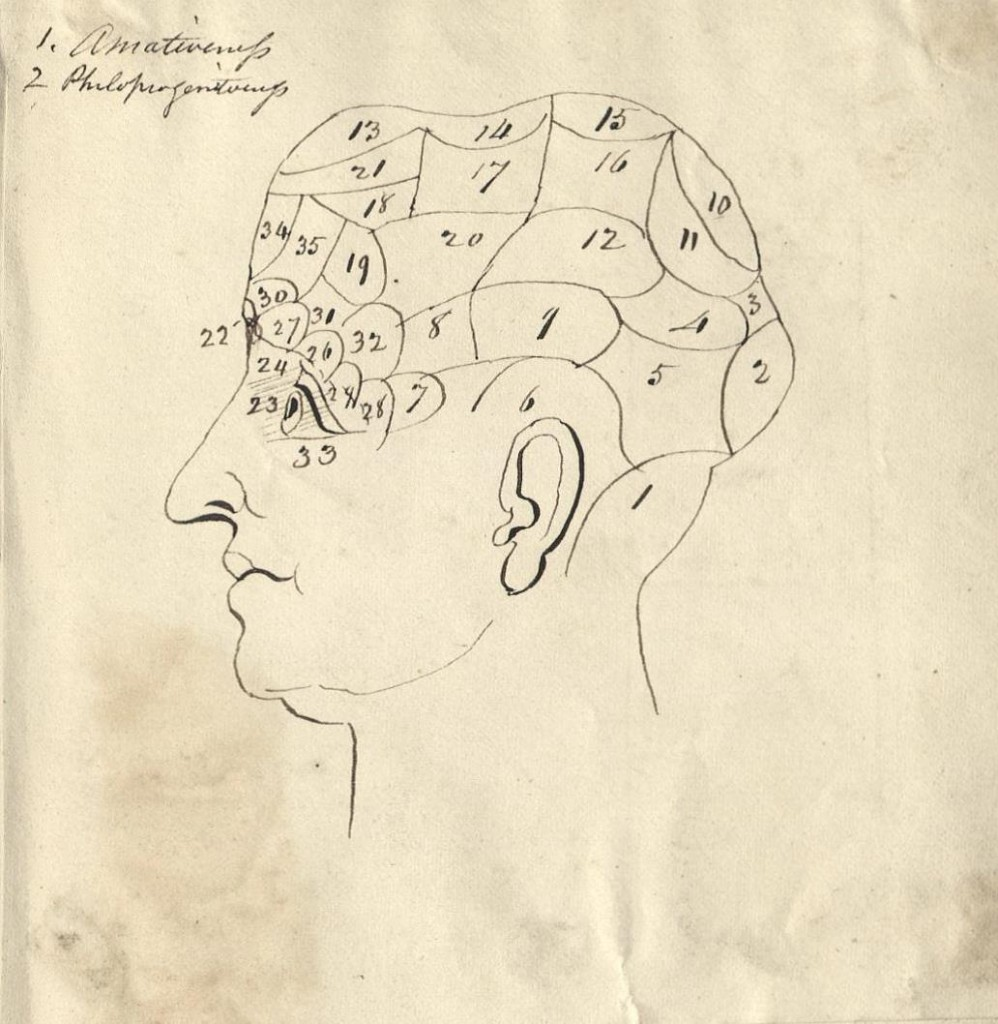 Phrenological bust from the commonplace book of  E. Bradford Todd.