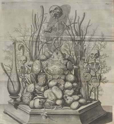 Illustration from Opera Omnia Anatomico-Medico-Chirurgica, ca. 1737.