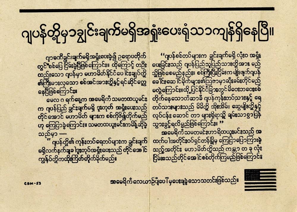 Burmese-back (2)