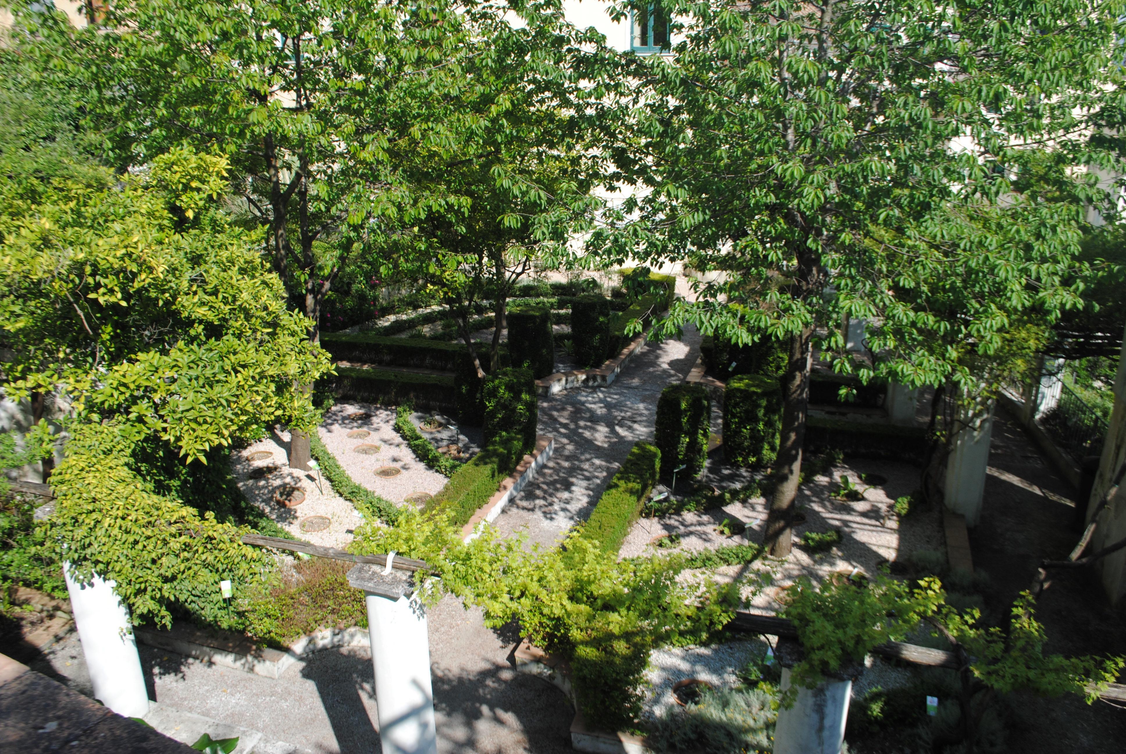Minerva Garden, Salerno Italy.