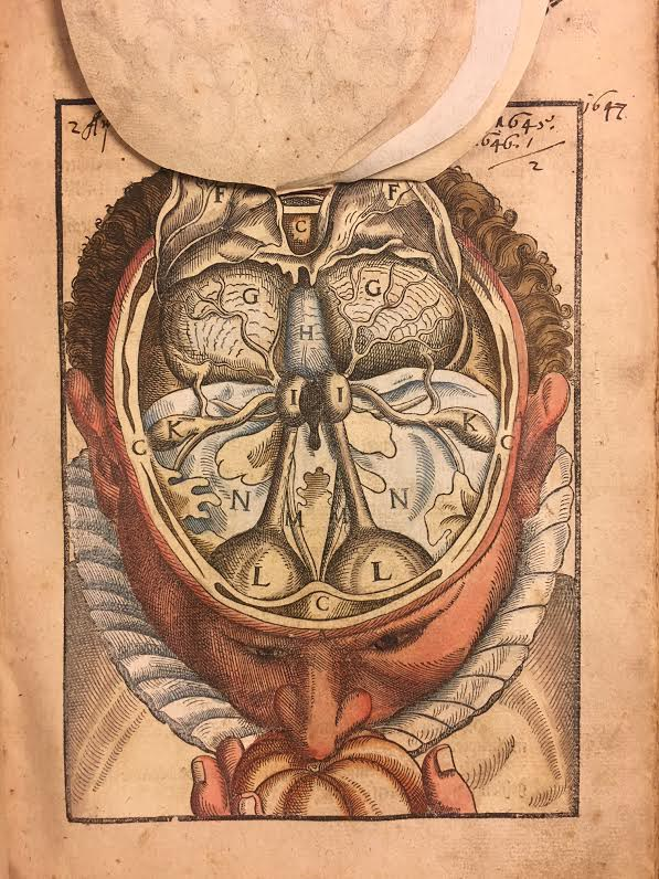Color photo of movable flap illustration from Ophthalmodouleia, das ist Augendienst showing the interior of the head.
