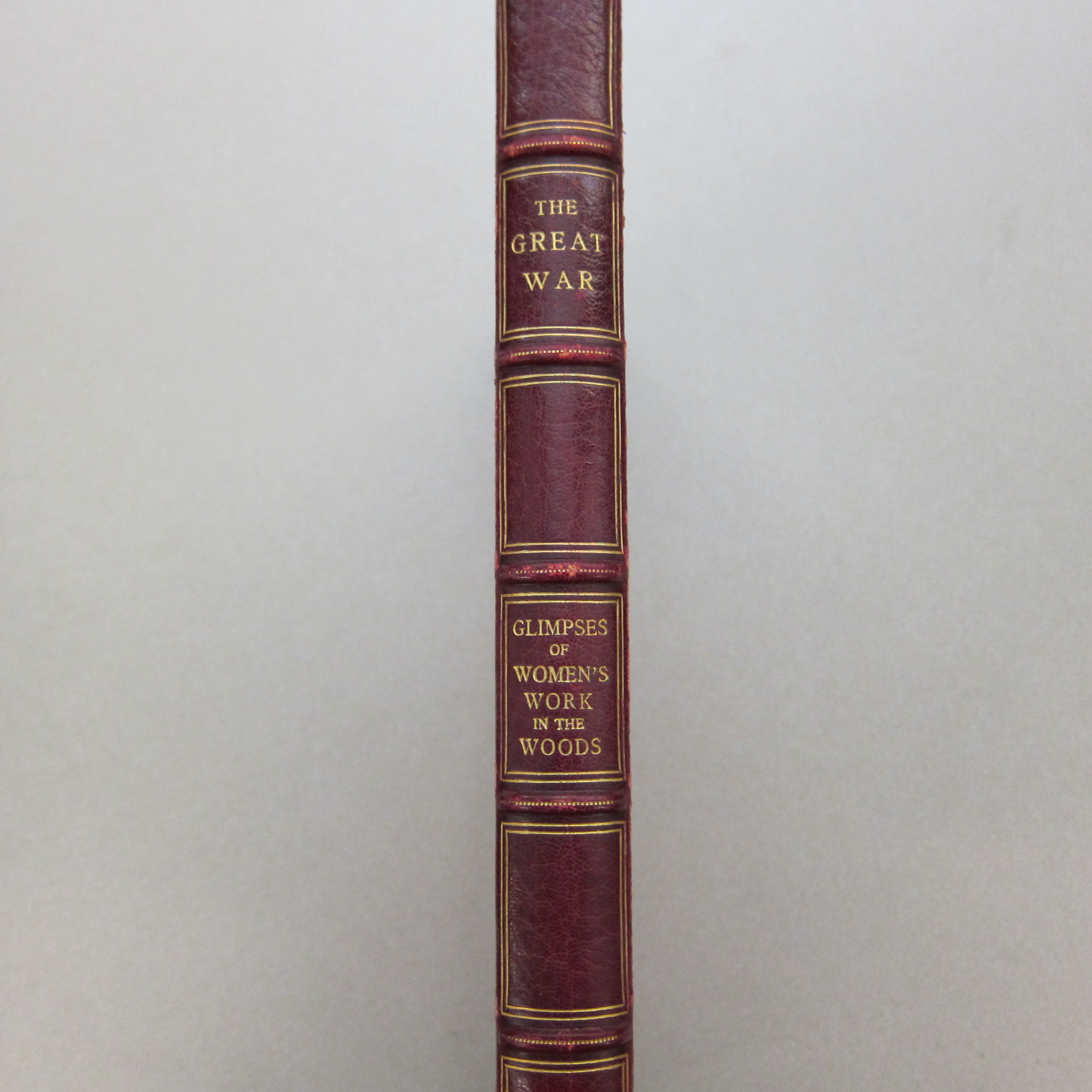Red leather spine of book.