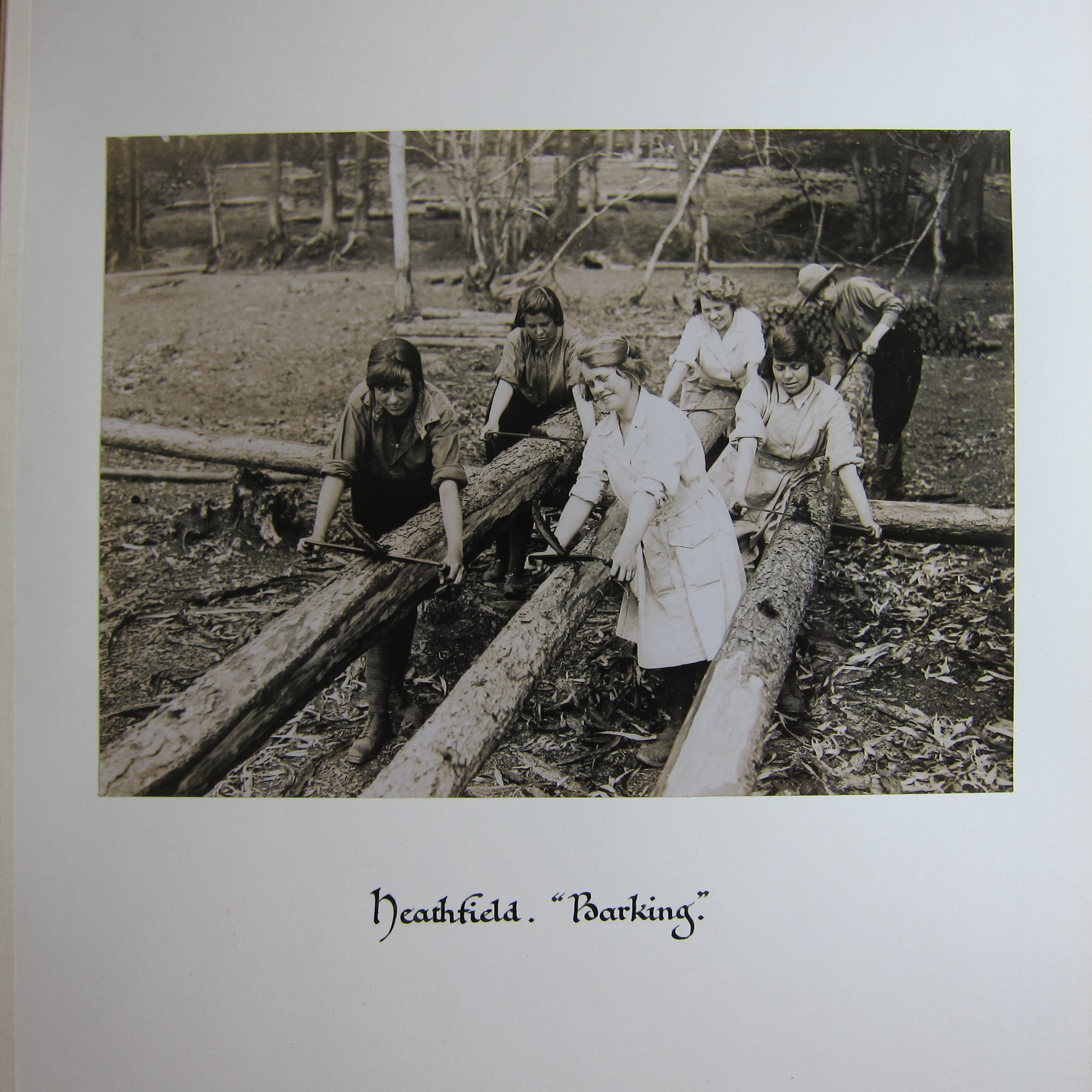 Photograph of 6 women scraping the bark off three logs.