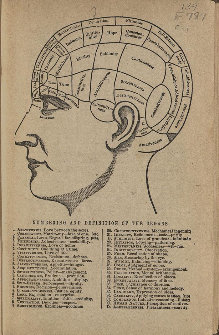 "Illustration of a Head showing the location of phrenology ""organs."""
