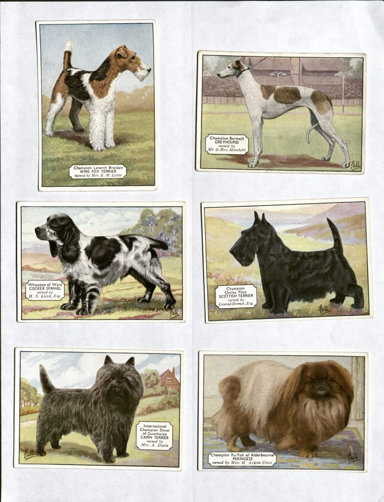 Scan showing six trading cards each illustrated with a different breed of dog