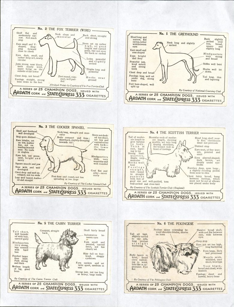 Reverse of trading cards show in the previous image, with a black and white outline of each dogs and text describing their features
