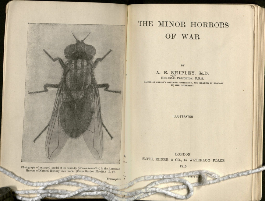 Two page spread of book showing title page and frontispiece. The frontispiece is an enlarged illustration showing a fly.