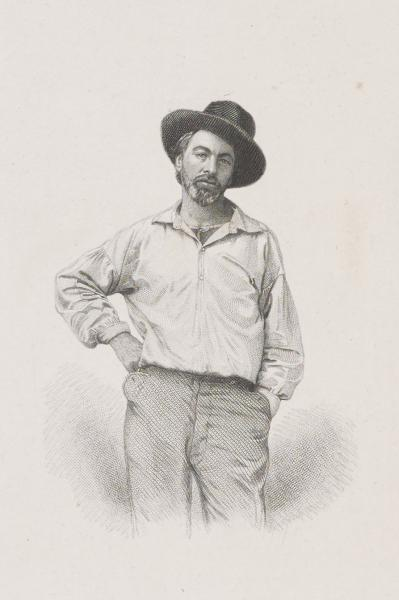 Young Walt Whitman